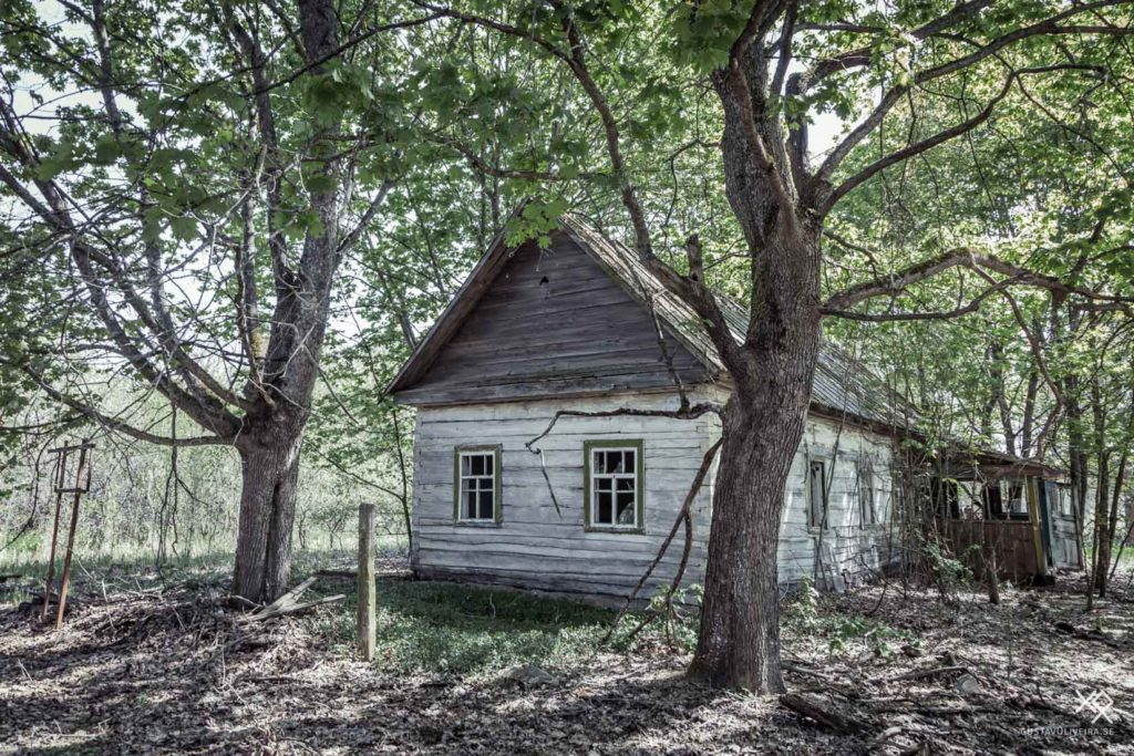 Chernobyl Village